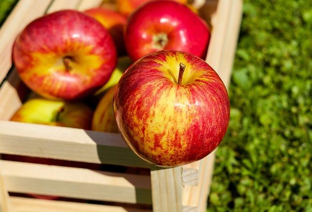 Jak przechować przez zimę jabłka?